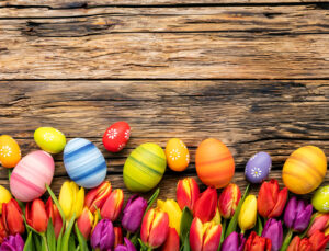Read more about the article Wir wünschen Euch allen frohe Ostern!